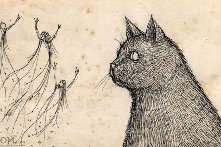 """Нохой, муур зэрэг амьтад """"сүнс"""" харж чаддаг уу? Бидний анзаардаггүй үелзлийг тэд анзаардаг болохыг шинжлэх ухаан баталж байна"""